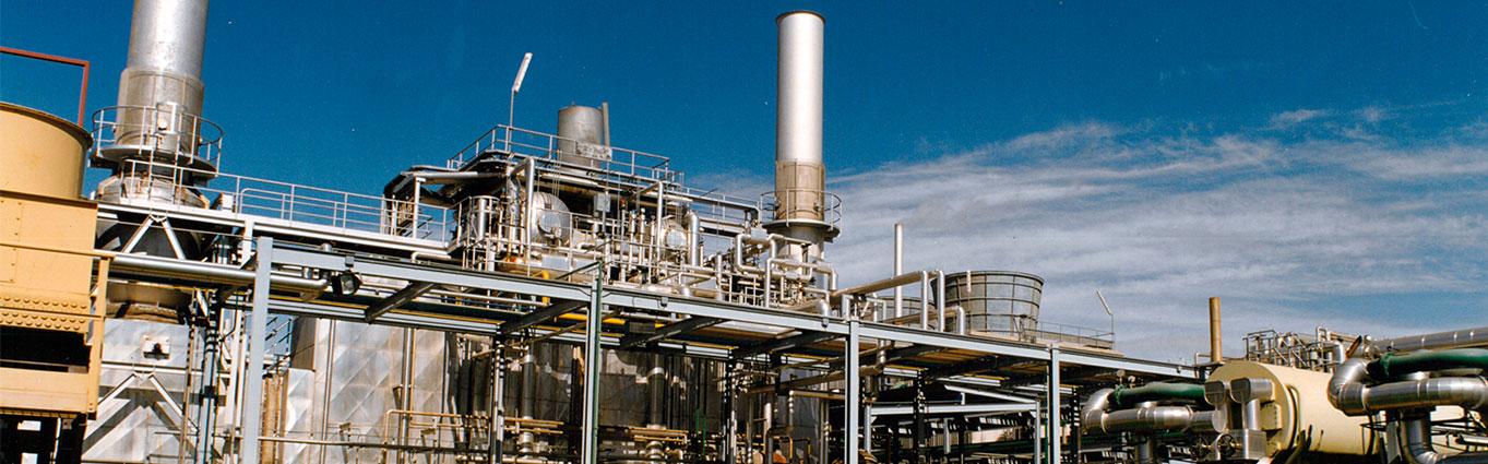 Cogeneration Plant NUREL 2000 History